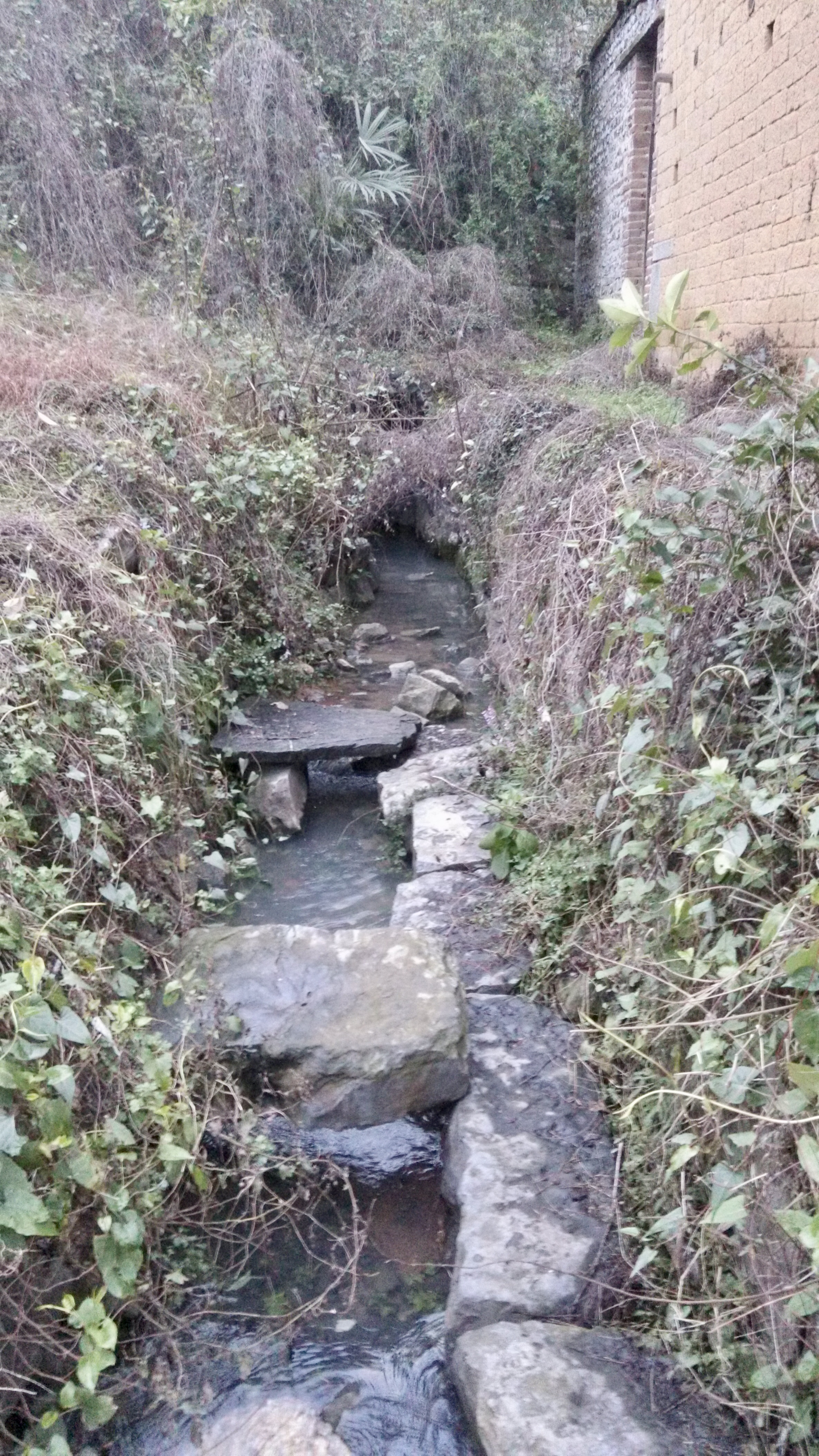 外祖父母家鄉老壪山脚下的泉水(攝于 20150221 18:17 正月初三,2020 年已被重新修建)